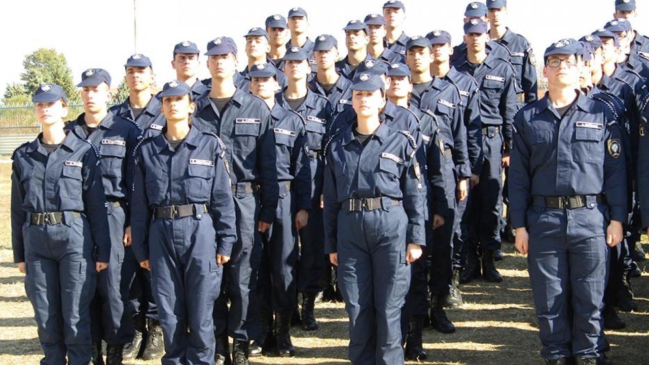 μεγάλοι αστυφύλακες