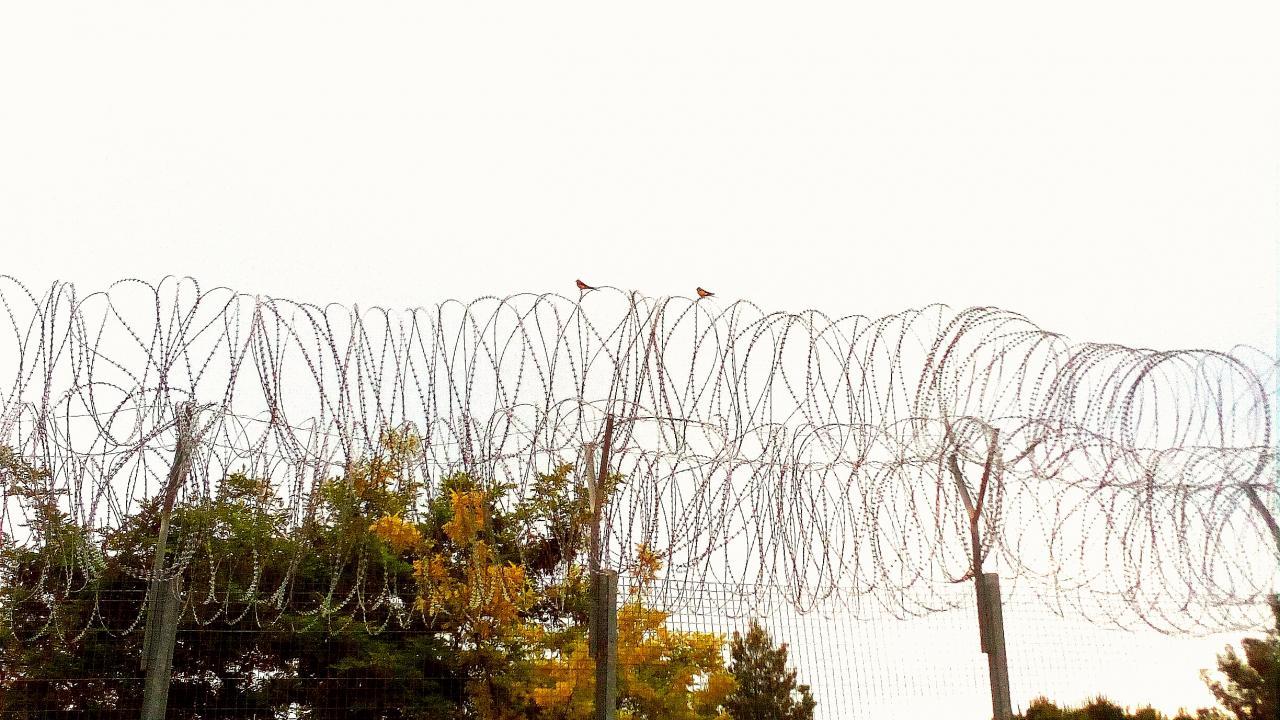 Θέατρο μέσα στη φυλακή | Το Κουτί της Πανδώρας