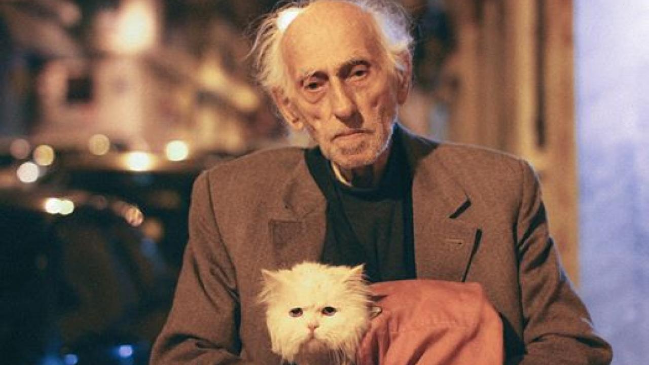 b7e72dc81b23 Ο ηλικιωμένος και η γάτα - Η ιστορία της φωτογραφίας που έγινε viral ...